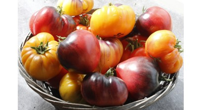 Top 10 2018 year Heirloom Tomatoes