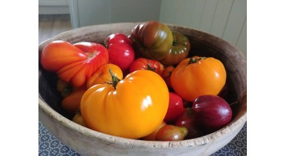 TOP 10 2019 YEAR HEIRLOOM TOMATOES